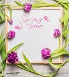 Textotez le printemps sur le tableau blanc avec de belles fleurs pourpres de tulipes Images libres de droits