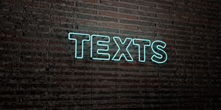 TEXTS -Realistic Neon Sign on Brick Wall background - 3D rendered royalty free stock image. Can be used for online banner ads and direct mailers Royalty Free Stock Image