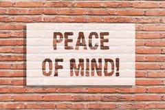Texttecken som visar fred av meningen Begreppsmässigt foto som är fridsamt lyckligt med saker som du har gjort och utför tegelste royaltyfria foton