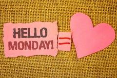Texttecken som visar Hello måndag Motivational appell Positivt meddelande för begreppsmässigt foto för en rosa sönderriven anmärk Arkivbild