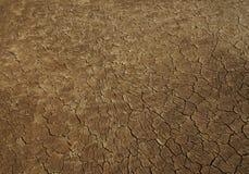 textu Иордана пустыни глины Стоковые Фотографии RF