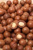 Textue de las nueces de macadamia Imágenes de archivo libres de regalías