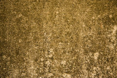 textur 10 royaltyfri bild