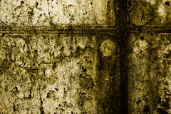 textur 48 Arkivfoton