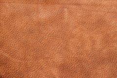 Textur av bakgrund för formgivaren, modell av yttersida för äktt läder för tappning medf8ort För bakgrund bakgrund royaltyfria bilder
