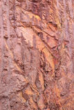 Textur av berget som visar röd jord och, vaggar Fotografering för Bildbyråer