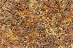 textur av brun marmorstenbakgrund och abstrakt begrepp Arkivbild