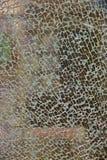 Textur av brutet blandat exponeringsglas Fotografering för Bildbyråer