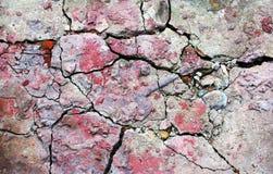 Textur av chappy lithoidal yttersida Arkivfoto