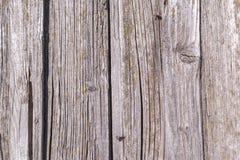 Textur av de gamla murkna träbrädena Royaltyfria Bilder