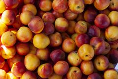 Textur av den bästa sikten för nya nektariner arkivfoto