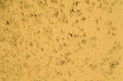Textur av den gula målarfärgen på betongen Royaltyfria Foton