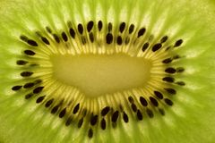 Textur av den saftiga mogna kiwin royaltyfri foto