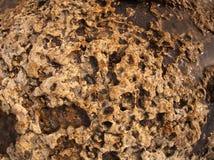 Textur av den våta och gula stenen Royaltyfria Foton