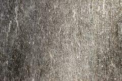 Textur av det gamla brädet Royaltyfria Foton