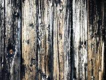 Textur av det gammala träbrädet Royaltyfri Fotografi