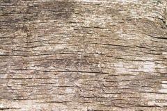 Textur av det gammala träbrädet Royaltyfria Foton