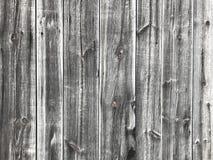 Textur av det gammala träbrädet Bakgrund och stads- detalj Royaltyfri Fotografi
