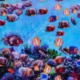Textur av det randiga akvariet för trycktyg Royaltyfria Bilder