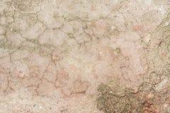 Textur av en gammal sprucken vägg som göras av betong Royaltyfria Foton