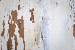 Textur av en träyttersida med vit sprucken målarfärg royaltyfria foton