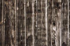 Textur av en vägg Arkivbilder