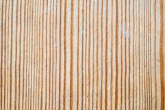 Textur av en wood modell Arkivfoto
