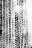 Textur av ett bilspår Arkivfoton