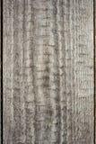 Textur av ett gammalt urblekt och ridit ut grovt trä Arkivbilder