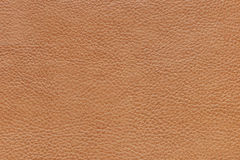 Textur av ett läder Royaltyfri Foto
