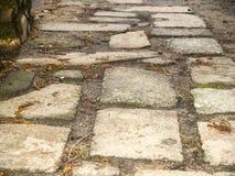 Textur av ett trottoargolv med mossa Arkivfoto