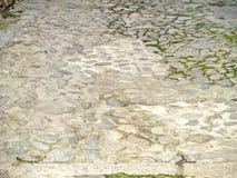 Textur av ett trottoargolv med mossa Royaltyfria Bilder
