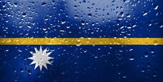 Textur av flaggan av Nauru arkivfoto