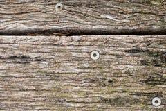 Textur av gamla red ut och missfärgade träbräden Arkivfoto