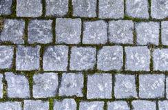Textur av golvet Royaltyfri Foto