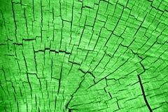 Textur av grå färger cuted trä fotografering för bildbyråer