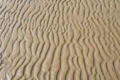 Textur av gul sand Royaltyfria Foton