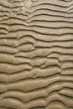 Textur av gul sand Royaltyfri Fotografi