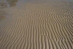 Textur av gul sand Arkivfoto
