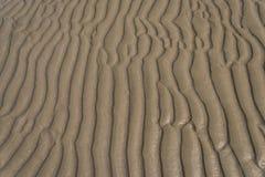 Textur av gul sand Fotografering för Bildbyråer