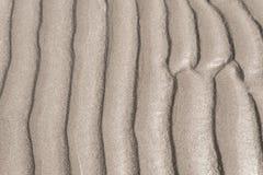 Textur av gul sand Arkivfoton