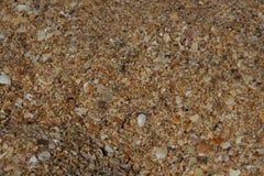Textur av havet fotografering för bildbyråer