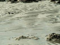 Textur av havsstranden med vaggar Arkivfoto