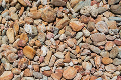 Textur av kiselstenar eller grus Royaltyfria Foton