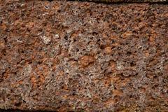 Textur av konst och kultur för gammal sten forntida på den Phanom ringde nationalparken i norr öst av Thailand arkivbild