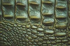 Textur av krokodilläderhud arkivfoto