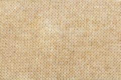 Textur av kryssfaner Arkivfoto