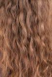 Textur av långt blont hår. Arkivfoto