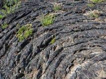 Textur av lavaflöde Arkivbilder