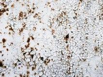 Textur av metall som täckas med vit målarfärg för skalning Royaltyfri Bild